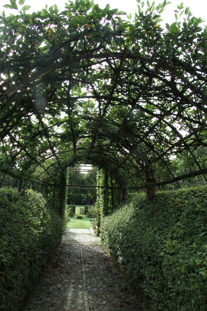 lovely leafy arch