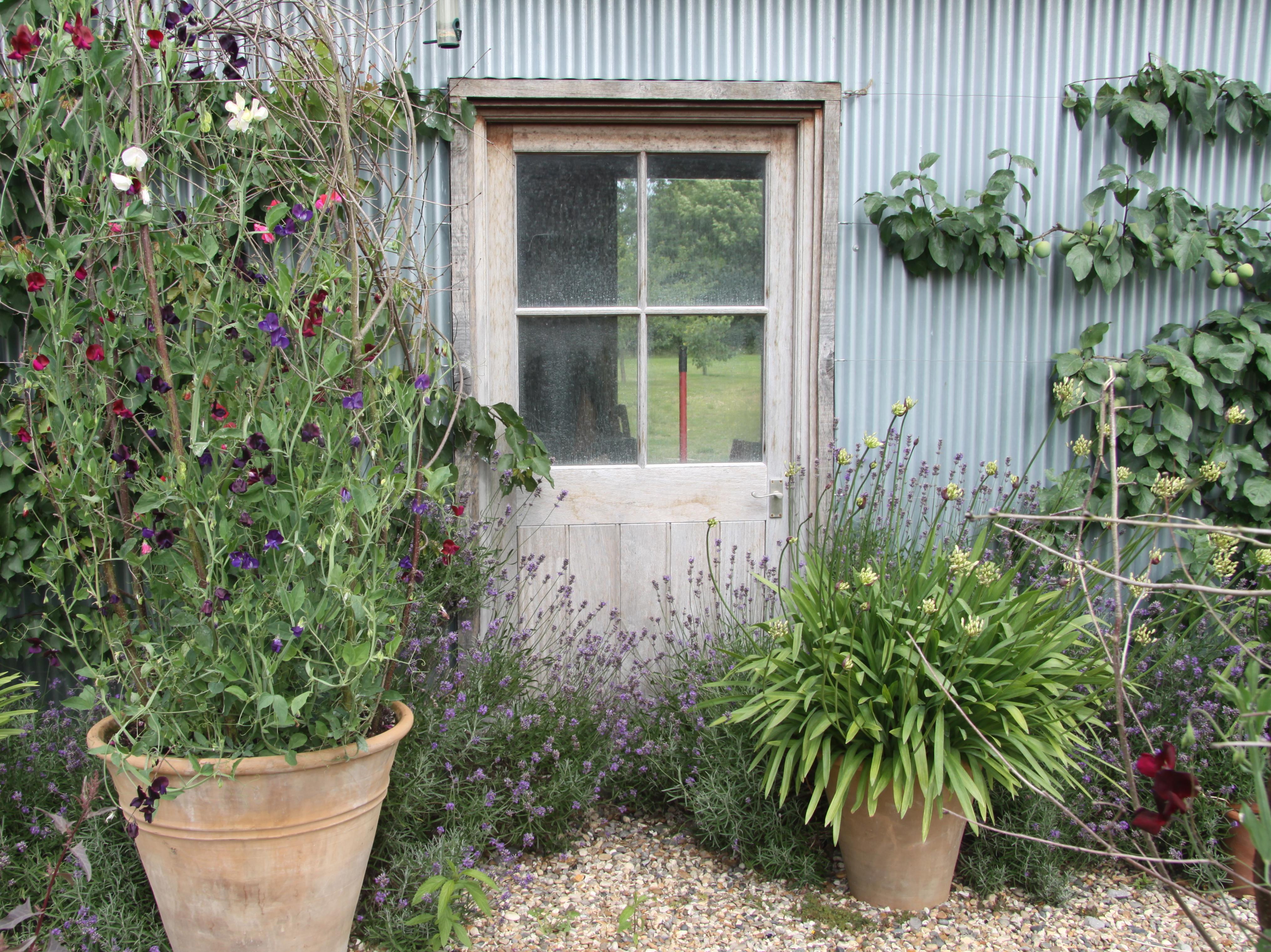 dy wooden garden