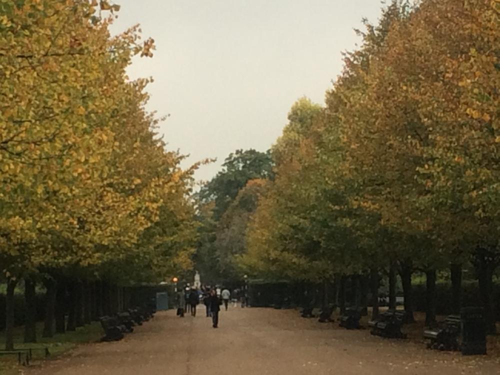 avenue regents park