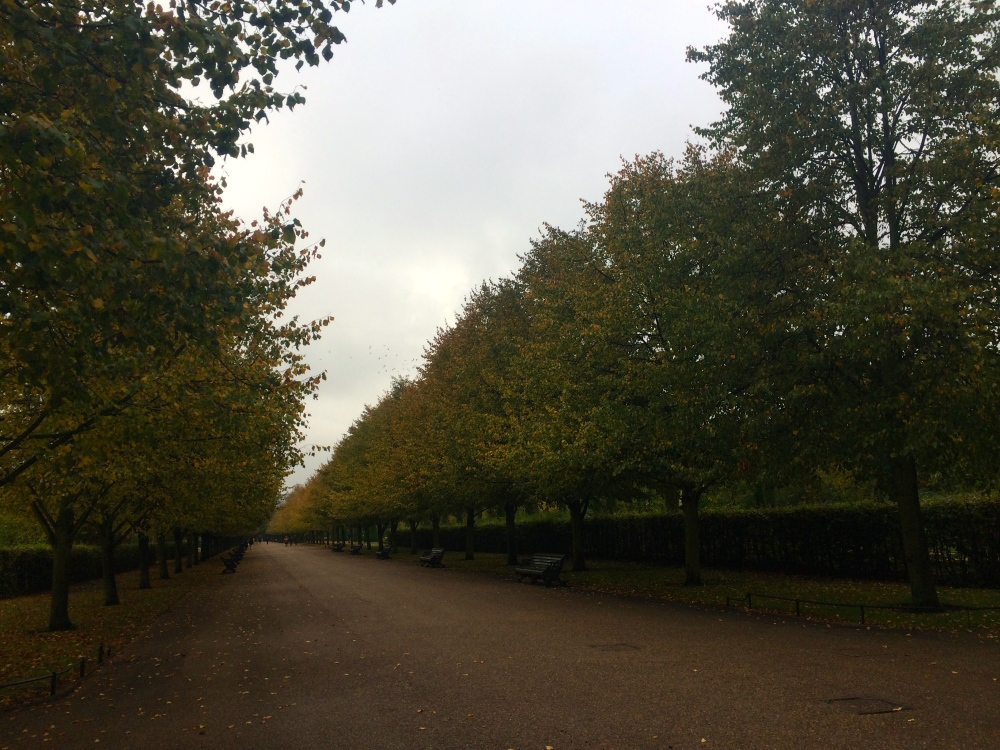 side view avenue regents park