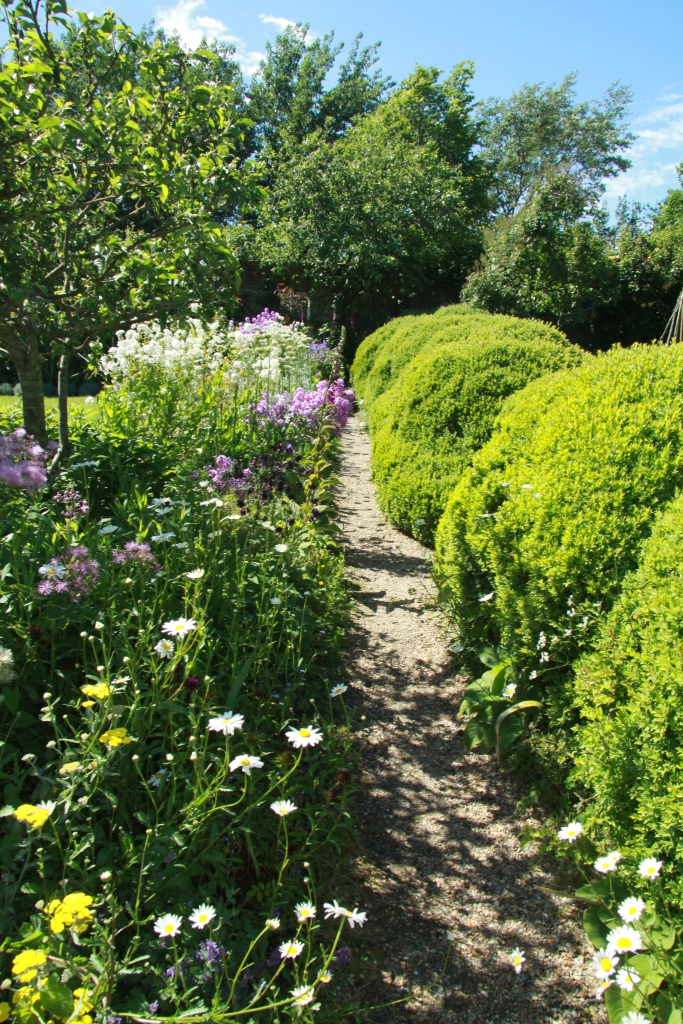 hedge view