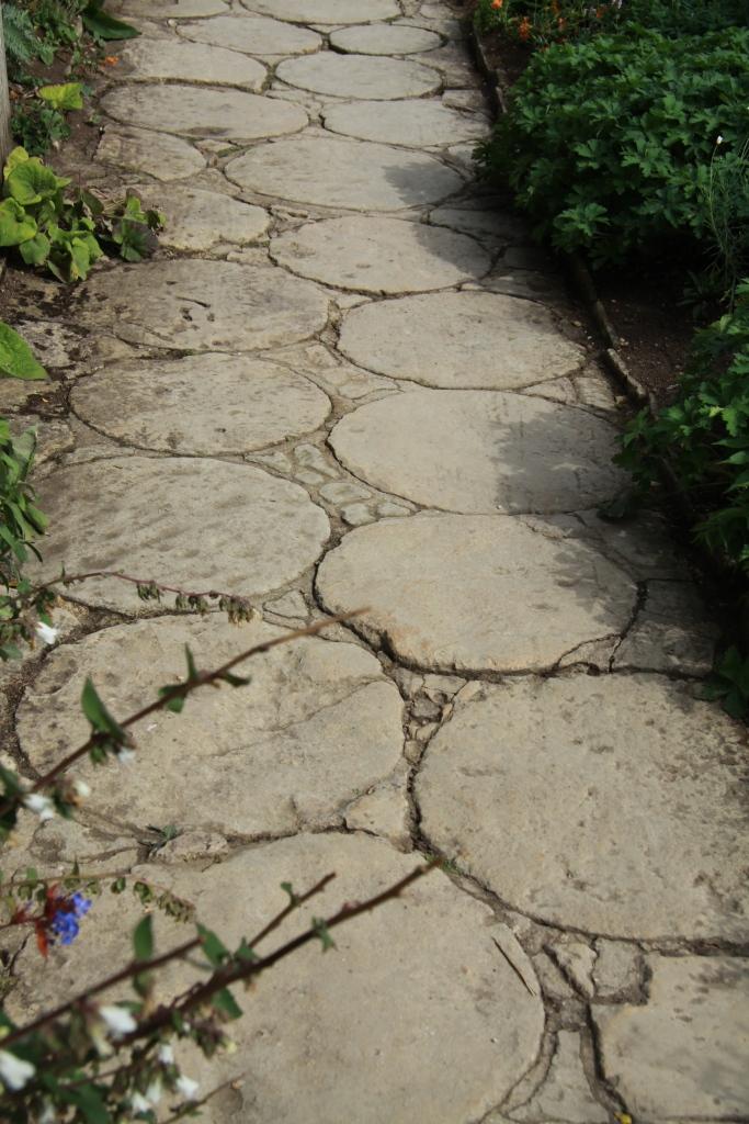 path of circles